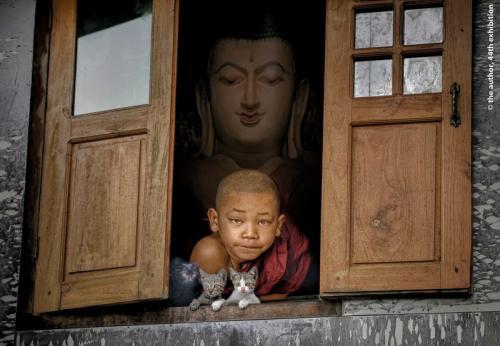 Liu Hsin-Hsin Beings door