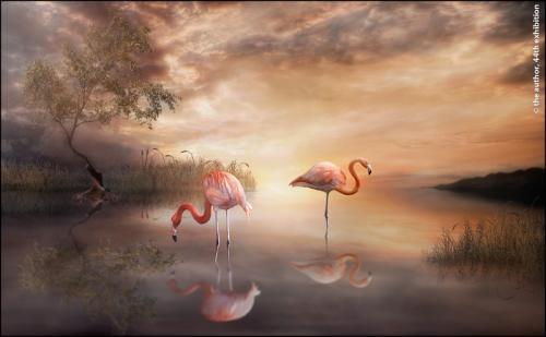 PAGB Ribbons-Flamingo Paradise-Jayne Libby-Wales